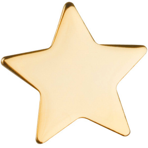 The Blogworld Gold Star Awards Bwela