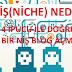 Niş(Niche) Nedir? Doğru Bir Niş(Niche) Blog Seçmek İçin 4 İpucu ve Taktikler
