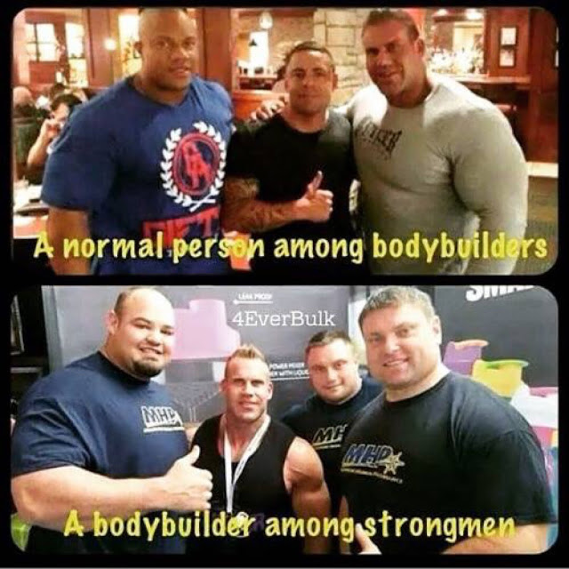 A normal person among bodybuilders... A bodybuilder among strongmen.  StrengthFighter.com