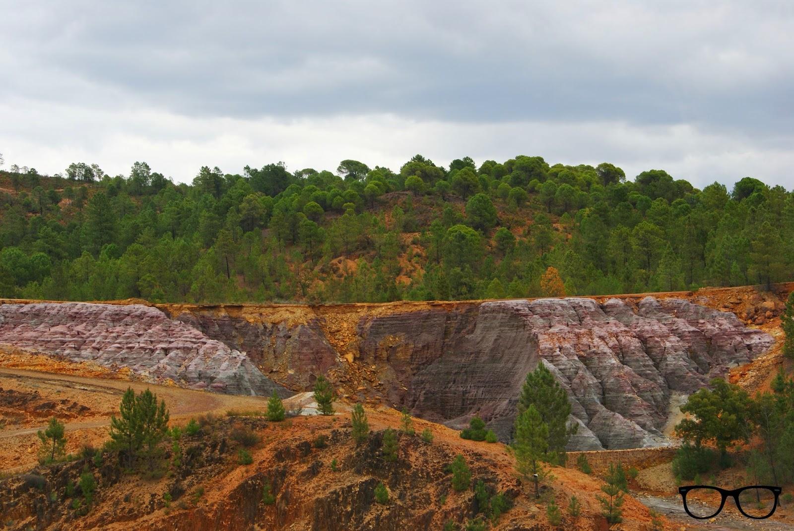 Bosque Río Tinto