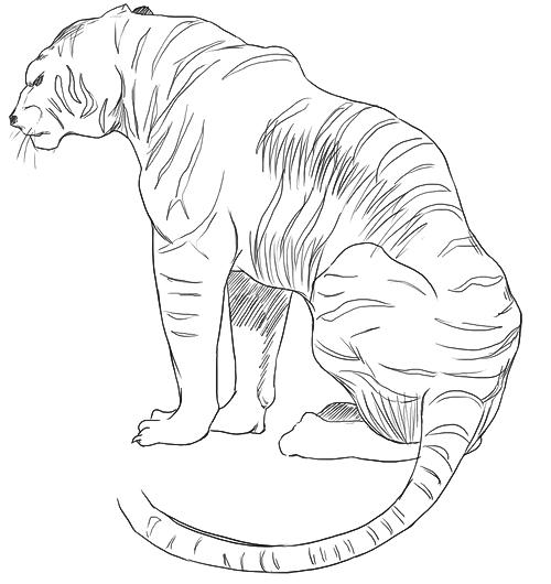 Scribbling and studies...: More cat studies- from ken