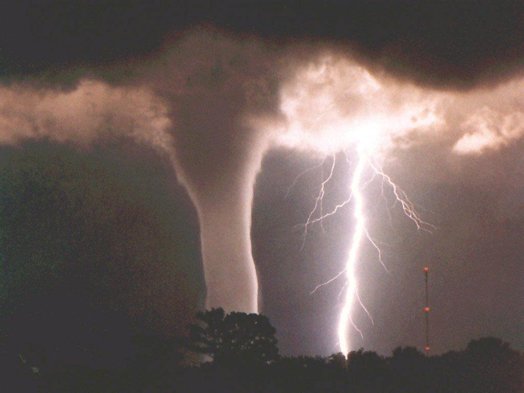 Climate Strike Wikipedia: Mundo Ecológico: Tornados