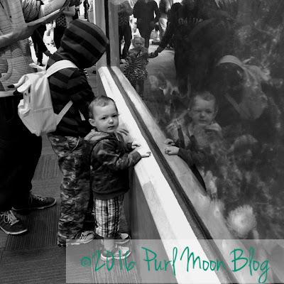 ©2016 Purl Moon Company and Lacie Nichols
