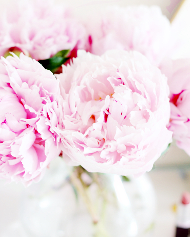 interiors blogger peonies