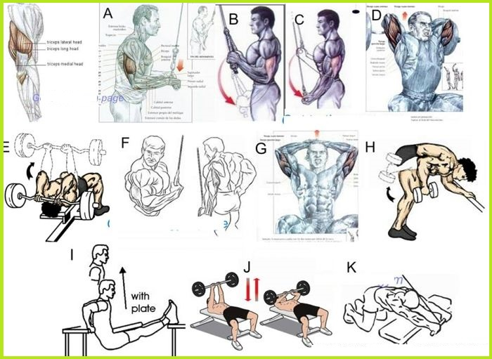 The Best Triceps Exercises to Build Muscle Fast - all ...