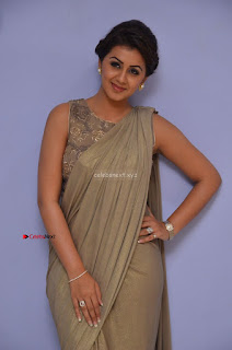 Nikki Galrani in Saree 103.JPG