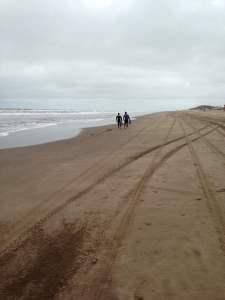recorriendo las playas despues de la sudestada