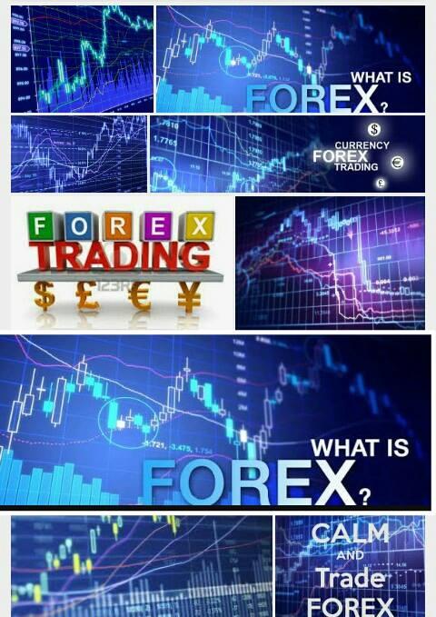 Meraup Untung Milyaran Dalam Sekejap Mata Dari Bisnis Trading Forex