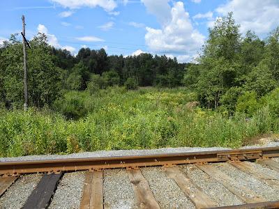 В окрестностях железной дороги