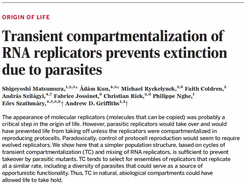 Enterobius vermicularis tudományos cikk - A paraziták a férgek tüneteit gyermekeknél