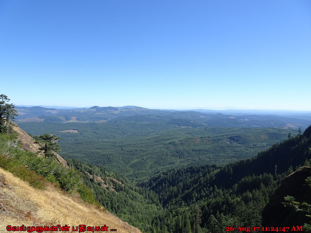 Oregon Saddle Mountain Natural Area