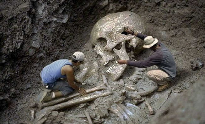 Giant Human Skeleton Found In Thailand? Skull