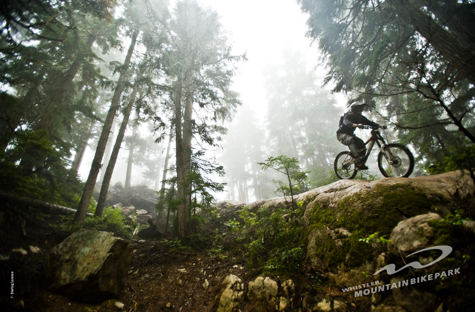all best picos: 13 Jan 2013 . Wallpaper specialized , demo ...