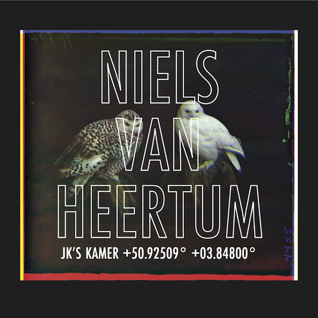 Niels Van Heertum op het BRAND!-festival