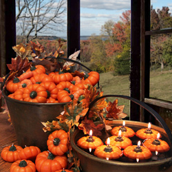 Fall Pumpkin candles