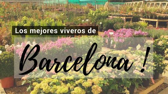 Listado de los Mejores Viveros de la Provincia de Barcelona, España, donde puedes comprar plantas para tus proyectos