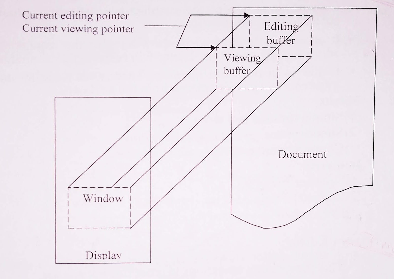 What is Editor? Different Types of Editors
