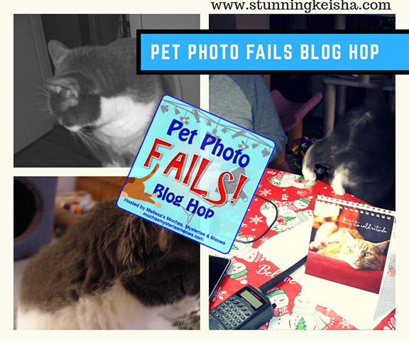 January Pet Photo Fail Convos