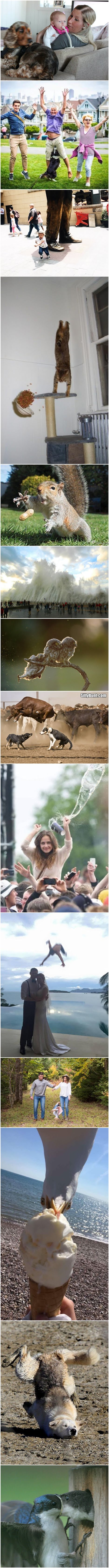 Funny Perfectly Timed Photo Collection Strip