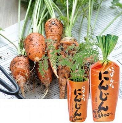 Ippon Demo Ninjin Carrot
