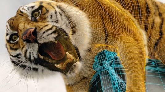 Pi Tiger