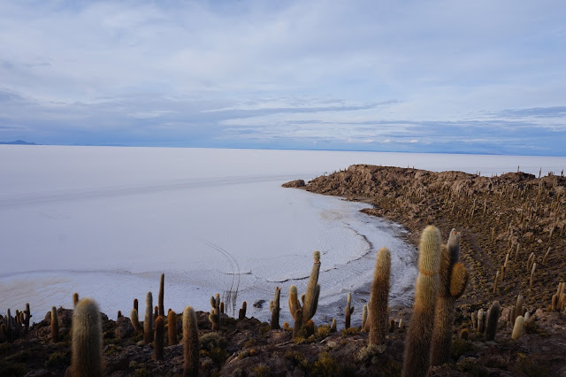 Red Planet Tour Uyuni Bolivia salt flats salar de uyuni inca wasy fish island