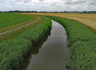 Foto De Pieterbuurtsermaar in het Groninger Hogeland: water en landbouw verbonden. Bron: PBL, https://www.pbl.nl/nieuws/2020/voorgenomen-maatregelen-leiden-tot-verbetering-waterkwaliteit