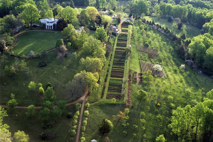 T Jefferson 39 S Amazing Vegetable Garden