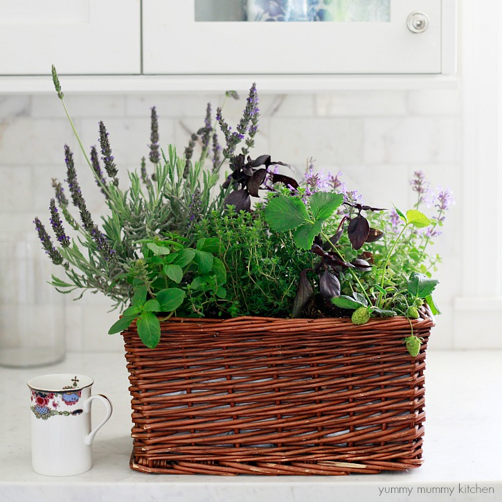 How to make a beautiful kitchen window herb garden