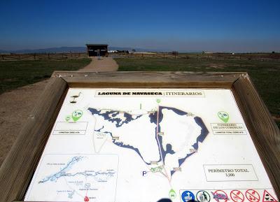 Itinerarios por la laguna de Navaseca