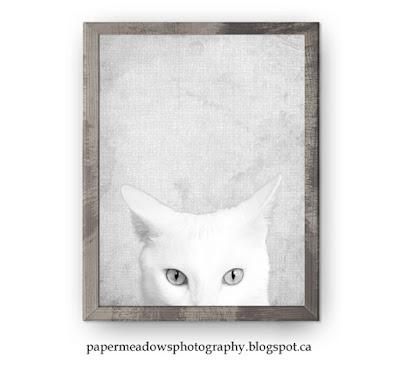 Paper Meadows Photography Blog-Free printable peekaboo animal print set Cat and Bird.