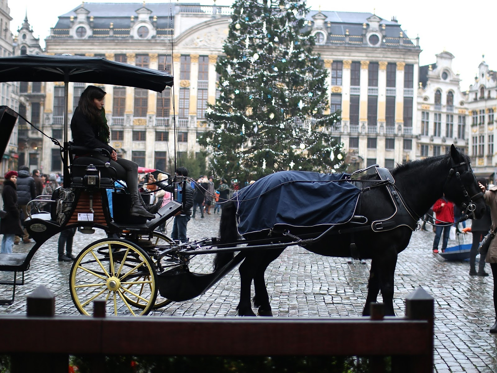 horse drawn carriage in brussels main square during chistmas