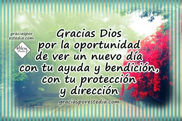 Frases de gracias a Dios en oración corta por este inicio del día, agradecimiento al Señor por lo que nos da, imagen con frases de gracias por Mery Bracho.