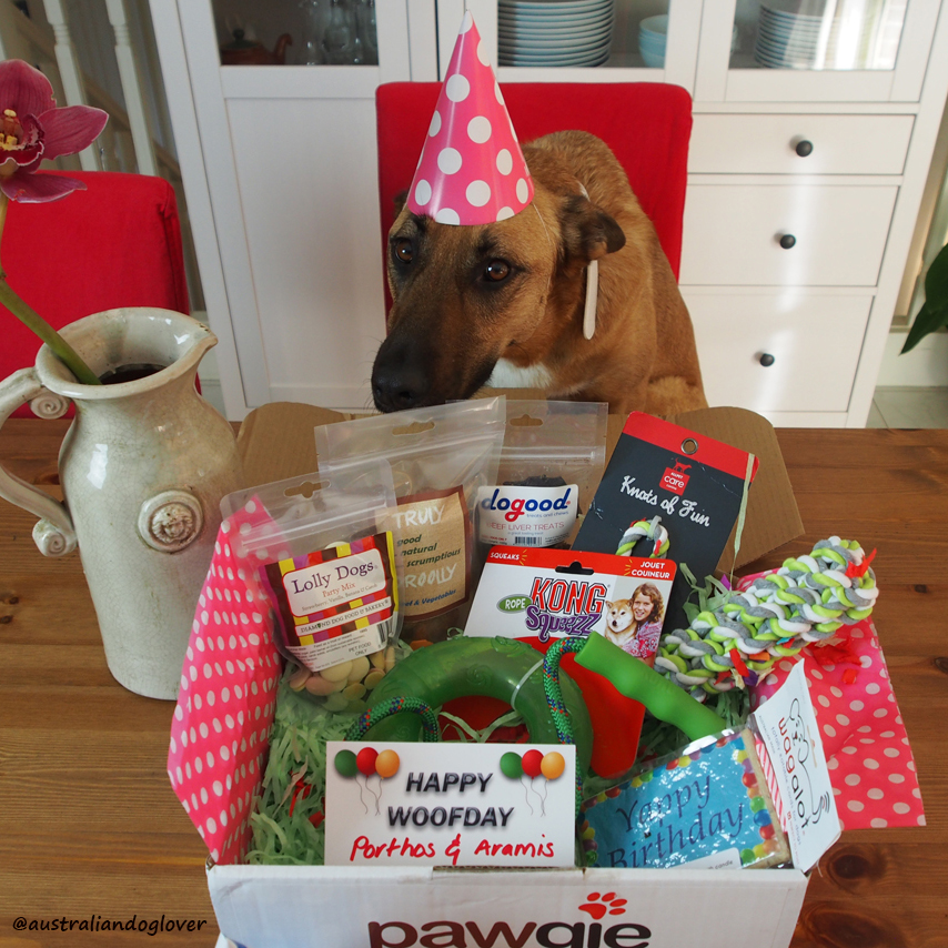 Pawgie Birthday Gift Box for Dogs | Australian Dog Lover