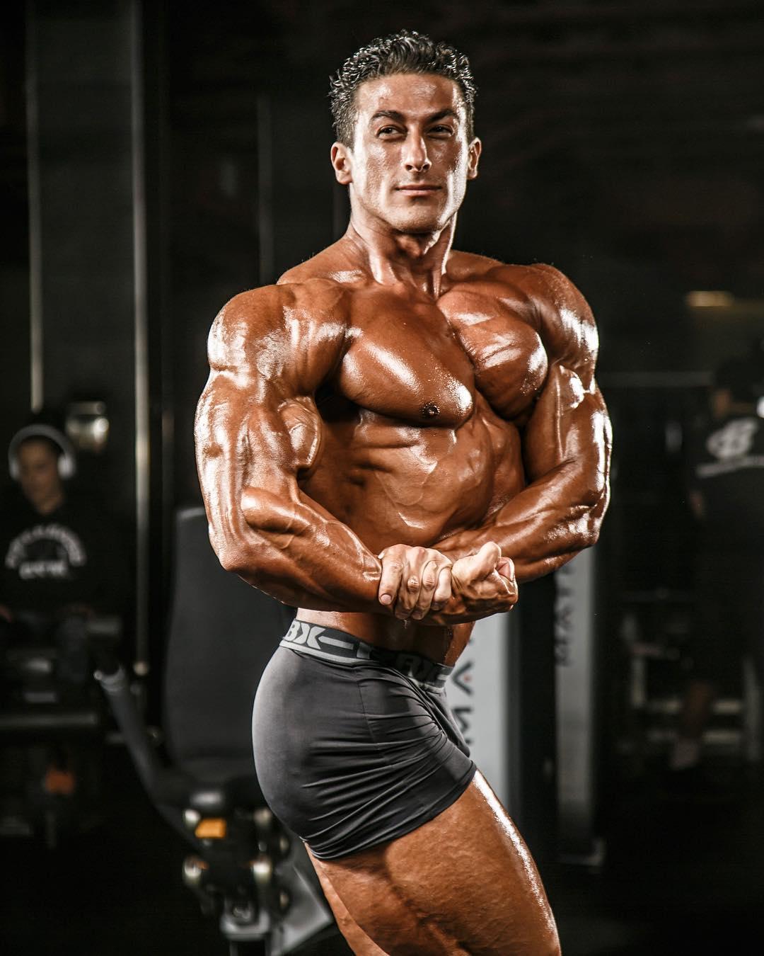 World fitness : SADIK HADZOVIC