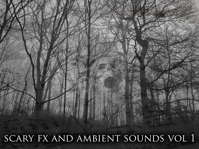 Scary FX and Ambient sounds