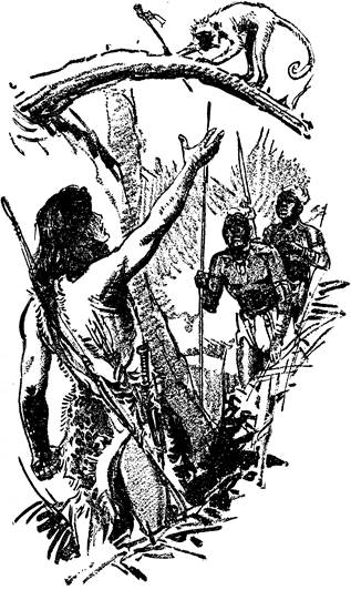 Illustration by Frank Hoban for Tarzan and the immortal men - January, 1936 issue of Blue Book magazine