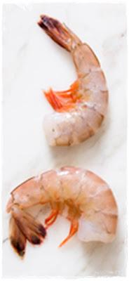 shrimp or prawns