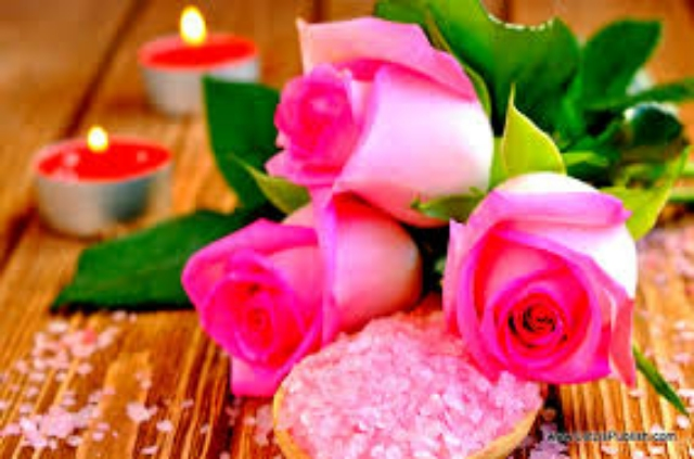 SUPER AND NICE PINK FLOWERS WALLPAPERS HD IMAGES FOR