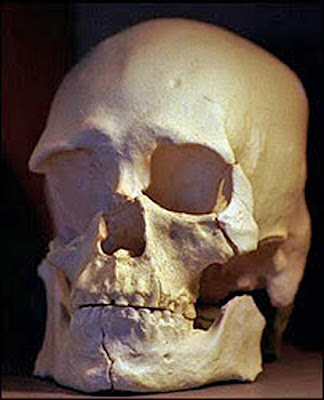13 Ancient Things that don't make sense in History - Kennewick Man