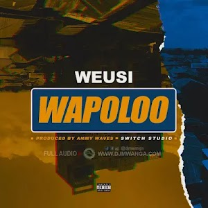 Download Audio | Weusi - Wapoloo