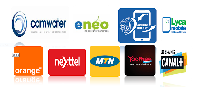 Credit Transfer, Payment of Bills & a Lot More Made Easy With digiPOS in Cameroon