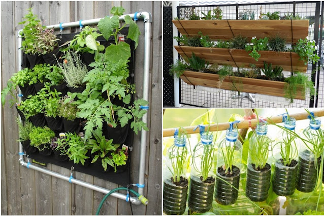 How To Make A Suspended Vertical Vegetable Garden: Step By Step