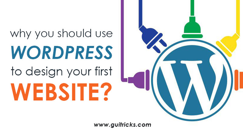 Use WordPress To Design Your First Website