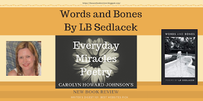 Editor Reviews LB Sedlacek New Poetry Book