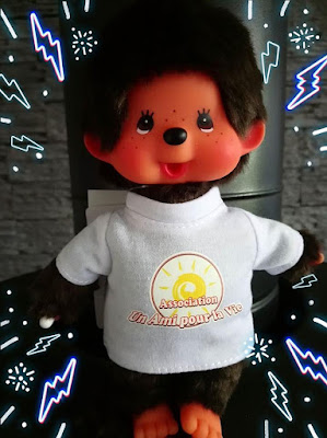 association un ami pour la vie, kiki, monchhichi, kivelin crauste, collection