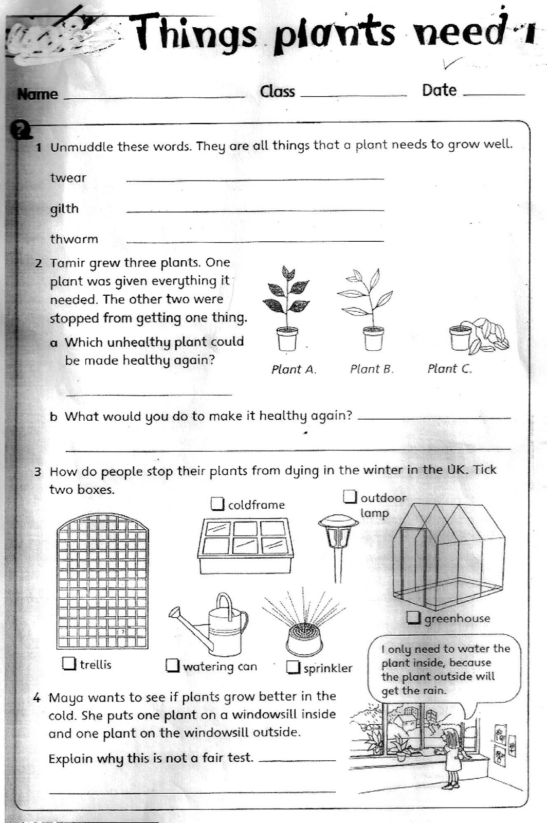 hight resolution of The City School: Grade 3 Science Reinforcement Worksheets