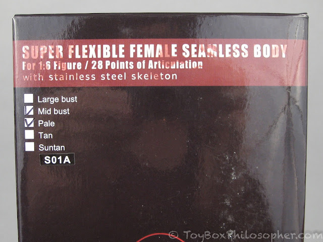 Phicen Female Seamless Body S07C Large Breast stainless steel Skelenton in Pale