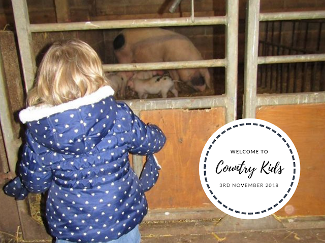 Country Kids 3rd November 2018