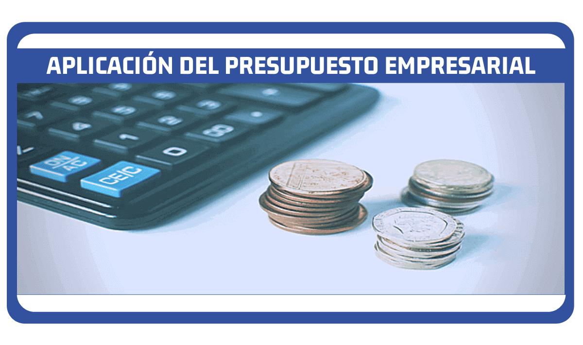 aplicación del presupuesto empresarial